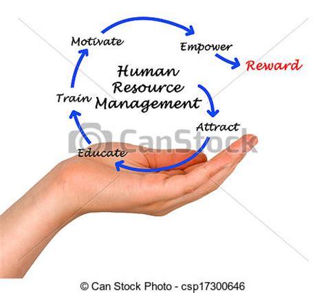Human Resource Management Paper Writing Pro-Paperscom